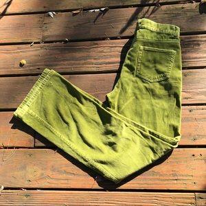 Georgiou Velvet Apple Green Pants bootcut 28/30